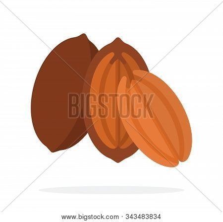 Pecan In The Shell, Half Pecan And The Kernel Of The Pecan Flat Isolated