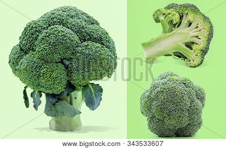 Single Object Of Broccoli Isolated On White Background