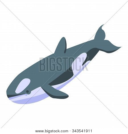 Orca Whale Icon. Isometric Of Orca Whale Vector Icon For Web Design Isolated On White Background