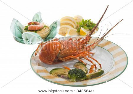 lobsters and crayfish sauce on colored background poster