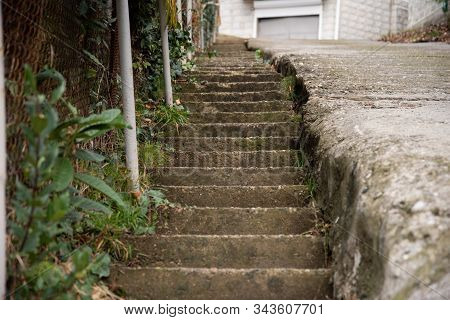 An Old Concrete Staircase Covered With Green Moss. Old Staircase On The Street Of The Old City. Stai