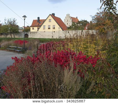 View Of Colorful Bushes And Flowers In A Public Park. City Wall And Old Buildings In The Background.
