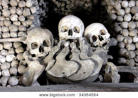 skull bone in Kutna Hora
