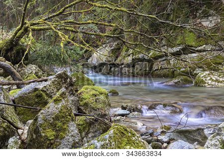 Fast Mountain River Flows In Forest Among Rocks And Mossy Stones. River Stiavnica. Janska Valley (já