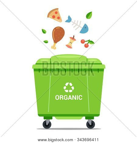Throw Organic Waste Into A Large Green Dustbin. Flat Vector Illustration.