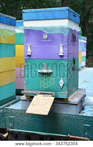 Bee Hive Weight Monitoring. Beehive Scale, Beehive Scale Suppliers. Colorful Beehive On The Scale
