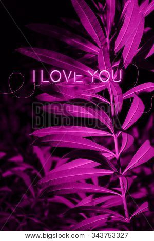 Valentine Card With Pink Neon Text. Valentines Day, Love, Wedding, Relationship, Romance Concept. Co