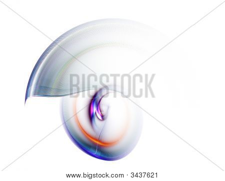 Nautilus, Colorful Abstract Background