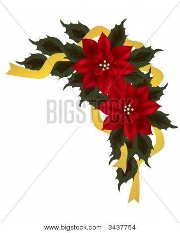 Poinsettia Corner Group
