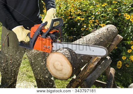 The Chainsaw