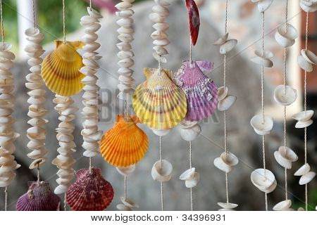 Seashells On Threads