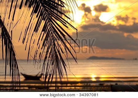 Sunset With Palm Tree In Front And  Defocused Boat