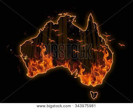 Fire In Australia. Animals And Forest Killed In Fiers. Catastrophe And Apocalypse. Pray For Australi