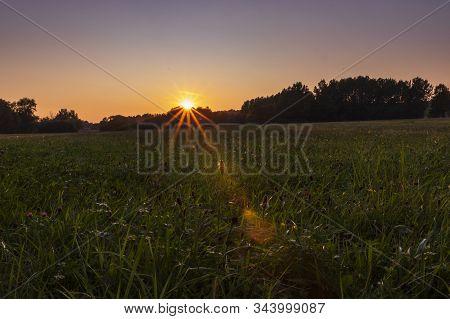 Sonnenuntergang Im Sommer Auf Einer Sommerwiese Mit Blumen.