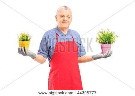 A mature male gardener with apron  holding two potted plants isolated on white background