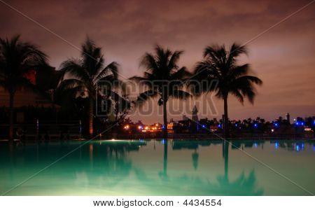 Miami Skyline from Standard Hotel