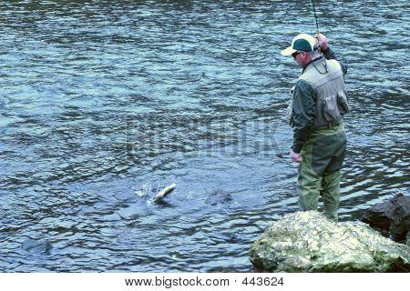 Fly Fishing 12
