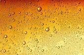 water drops on beer background poster