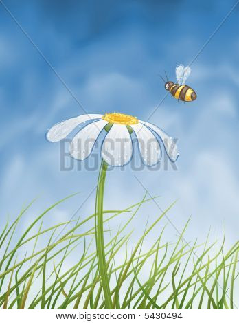 Blue daisy and a bee collecting honey over blue gradient mesh sky (vector image other flowers are in my gallery) poster
