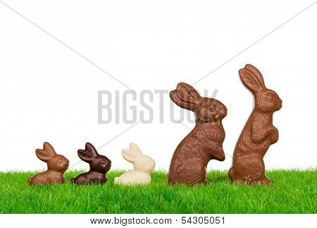 Easter Rabbit Family