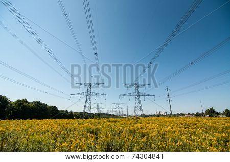Elecrical Pylon