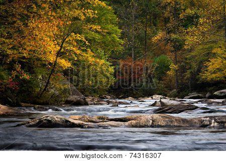 Wilson Creek In The Fall