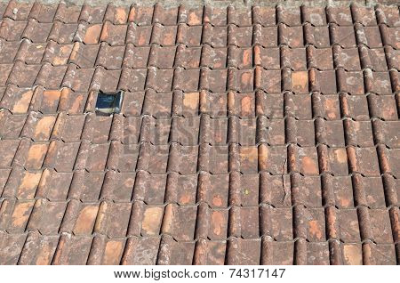 mildewed terracotta roof tile for background and testure poster