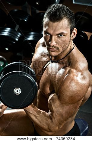 vertical close up portrait handsome guy bodybuilder execute exercise with dumbbells in dark gym poster