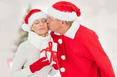 Festive mature couple holding gift against blurry christmas tree in room poster