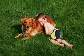 Young boy sleeping on dog in grass poster
