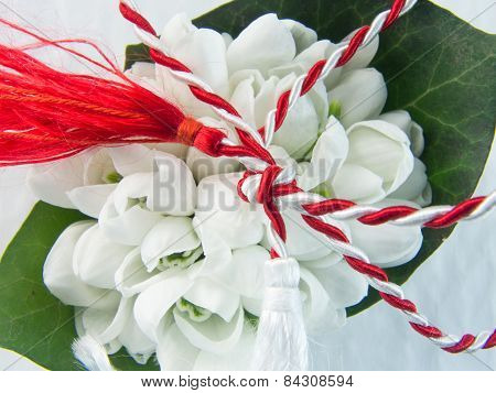 1st of March tradition white and red cord and ghiocel flower poster