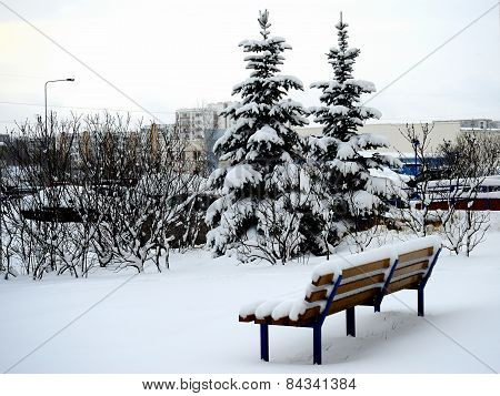 Winter In Capital Of Lithuania Vilnius City