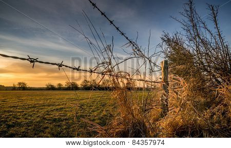 A barbed wire fence with wooden post