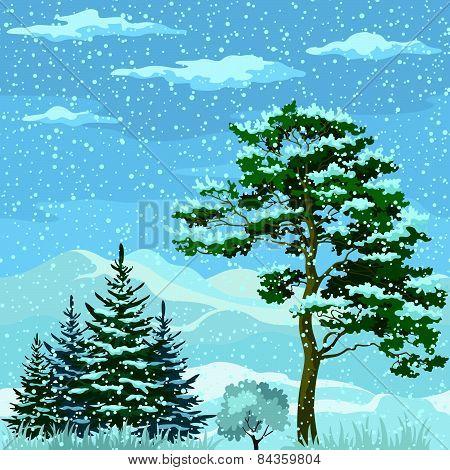 Seamless, Mountain Winter Landscape