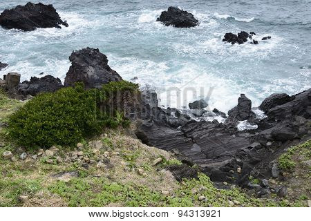 Volcanic Rocks  At A Coast Of Jeju Island.