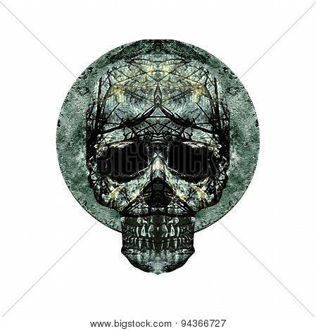 Isolated Skull Art Medallion