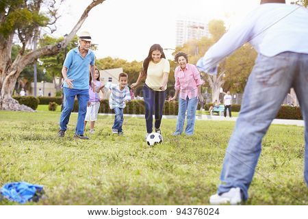 Multi Generation Family Playing Soccer Together poster
