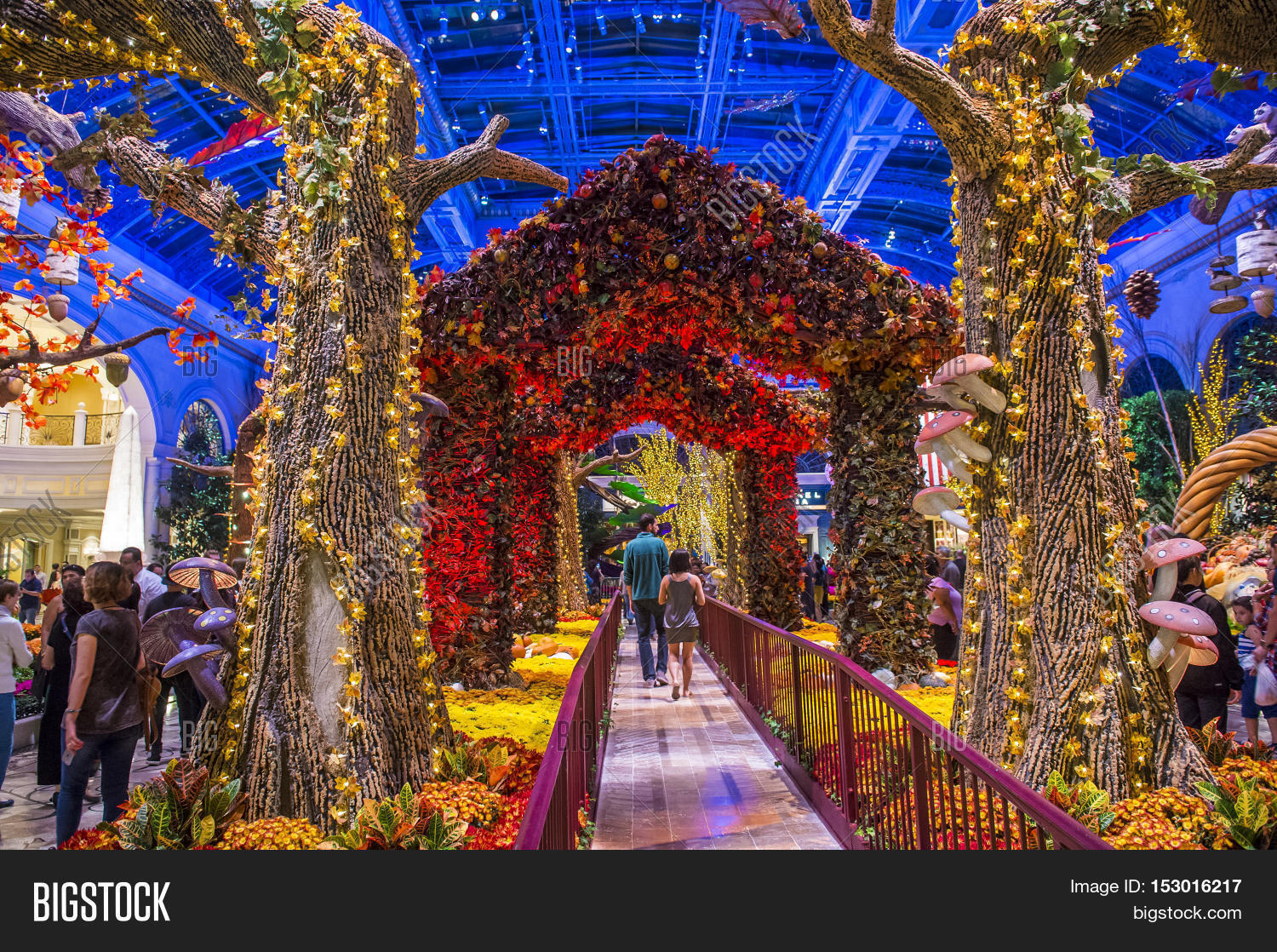 LAS VEGAS - OCT 05 : Image & Photo (Free Trial) | Bigstock