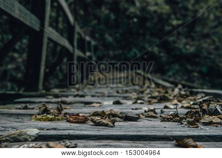 Autumn Leaves on the Old Wood Bridge in the Forest