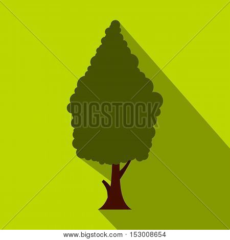 Green cypress icon. Flat illustration of cypress vector icon for web isolated on lime background