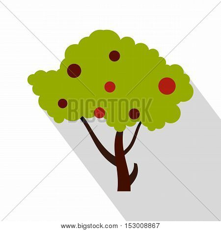 Apple tree with red apples icon. Flat illustration of apple tree with red apples vector icon for web