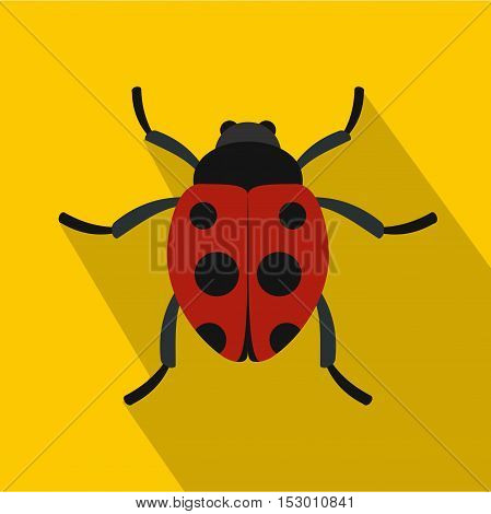 Red ladybird icon. Flat illustration of ladybug vector icon for web