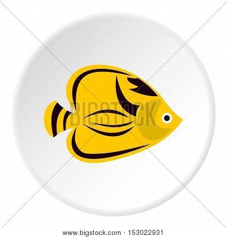 Fish yellow tang icon. Flat illustration of fish yellow tang vector icon for web