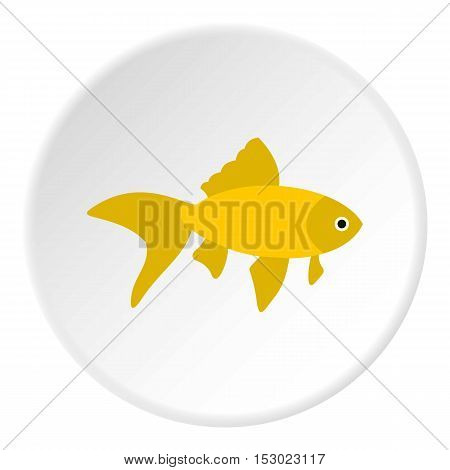 Goldfish icon. Flat illustration of goldfish vector icon for web