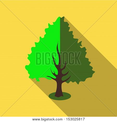 Fluffy green tree icon. Flat illustration of fluffy green tree vector icon for web