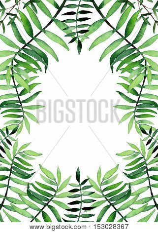 Herbal Frame with Watercolor Little Green Ferns