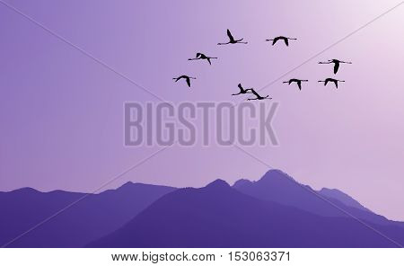 Lavender sky at sunset with of flocks of migratory birds silhouettes