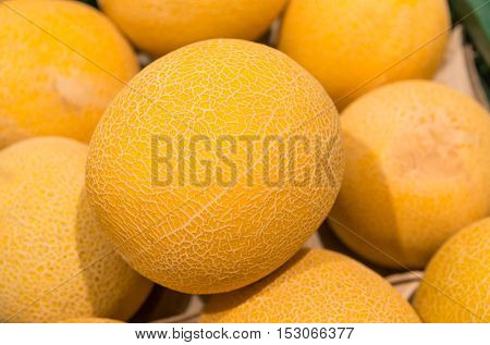 cantaloupe melon Yellow melon in a box on the store shelf fresh melons for sale in market