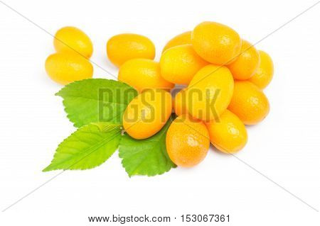 Kumquat with leaf on a white background.