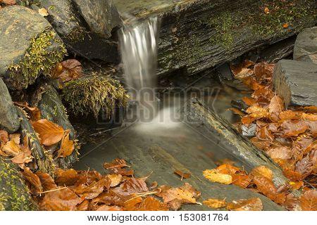 Small waterfall in beech forest Tejera Negra. Guadalajara Spain